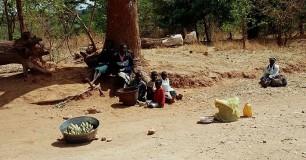 zimbabwe 03